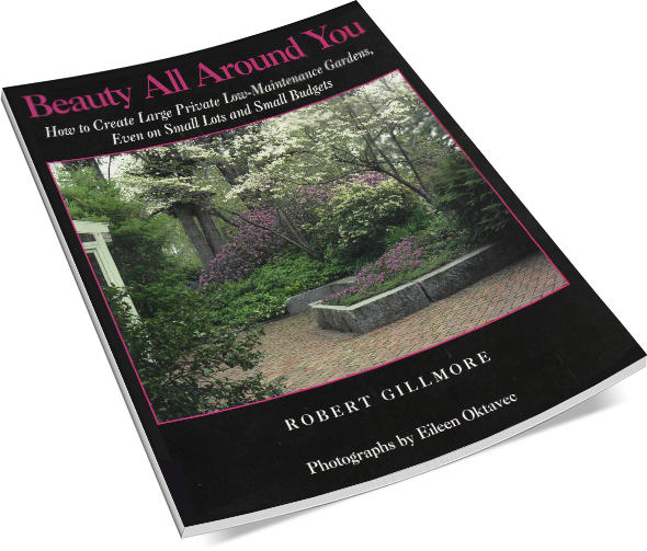 Beauty All Around You by Robert Gillmore