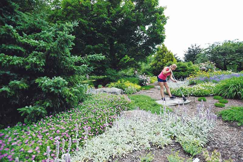 Marisa LaFoe sweeps a stone step at the Display Garden at Uncanoonuc Mt. Perennials.